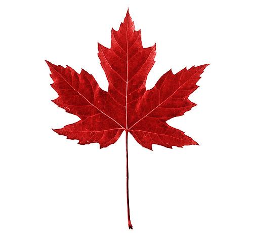 Hatley Canada Day